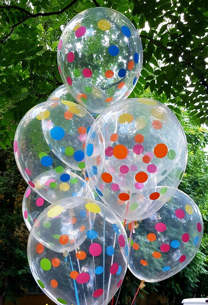 Baloane transparente cu print buline multicolor