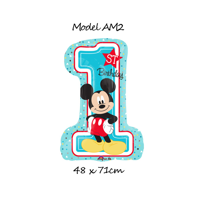 AM2 - 45lei