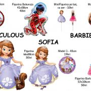 Barbie - Sofia - Miracoulous
